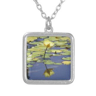 Waterlily con la reflexión joyerías