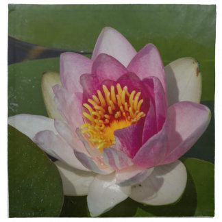 waterlily in the lake napkin