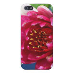 Waterlily iPhone 5 Protectores