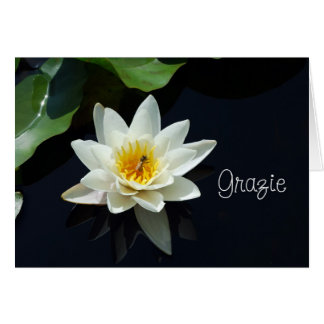 waterlily Italian thank you Card