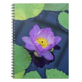 Waterlily notebook