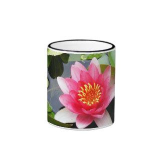 Waterlily rosado taza