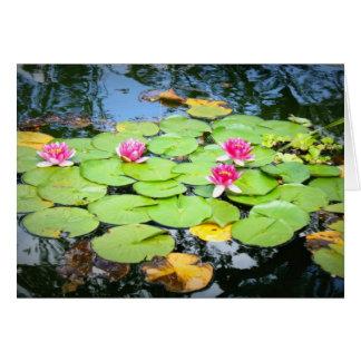 Waterlily Tarjeta De Felicitación
