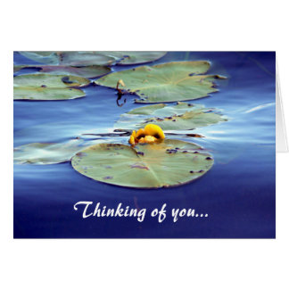 Waterlily Thinking of you... Greeting Card
