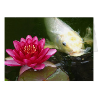 Waterlily with Koi Greeting Cards