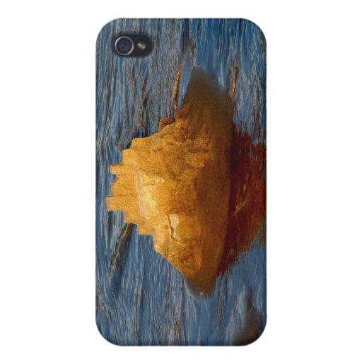 Waterlocked iPhone 4 Carcasas