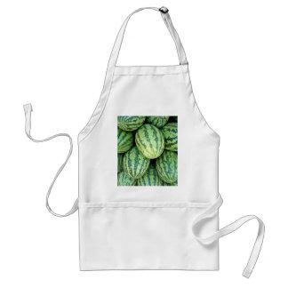 Watermelon Backdrop Adult Apron