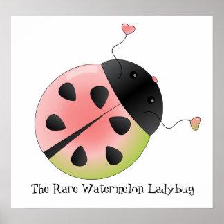 Watermelon Ladybug Poster
