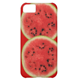 watermelon time iPhone 5C cover