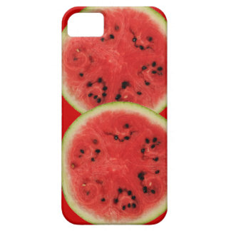 watermelon time iPhone SE/5/5s case