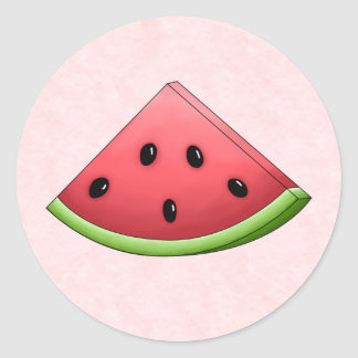 Watermelon with Pink Background Stickers