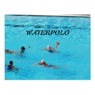 WATERPOLO POSTCARD