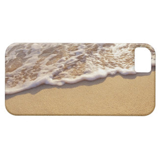 Water's edge 5 iPhone SE/5/5s case