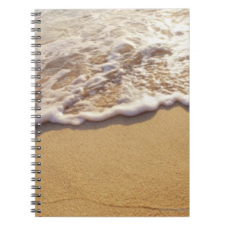 Water's edge 5 notebook