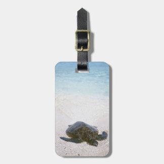 Water's edge bag tag