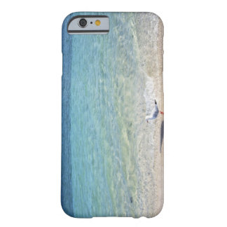 Water's edge barely there iPhone 6 case