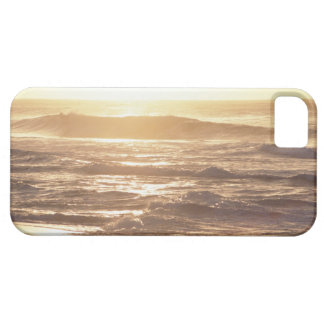 Water's edge (evening) 2 iPhone SE/5/5s case