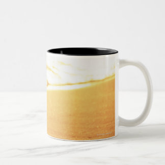 Water's edge (evening) 3 Two-Tone coffee mug
