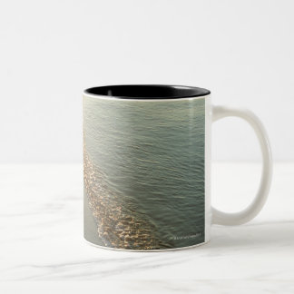 Water's edge (evening) Two-Tone coffee mug