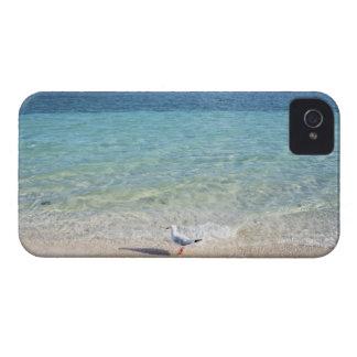 Water's edge iPhone 4 case