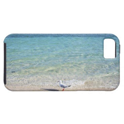 Water's edge iPhone 5 case