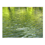 Waters of Oak Creek Yellow and Green Nature Photo Postcard