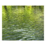 Waters of Oak Creek Yellow and Green Nature Photo Poster