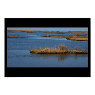 Waterscape at the Refuge Poster