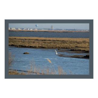 Waterscape Photo at the Refuge Poster