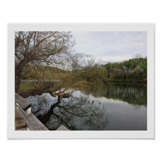 Waterscape with Trees Poster