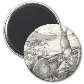 Watership Down 2 Inch Round Magnet