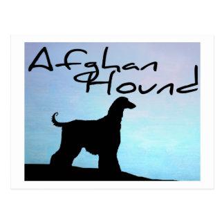 Waterside Afghan Hound Postcard