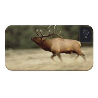 Waterton Lakes National Park, Alberta, Canada, a iPhone 4 Case-Mate Case