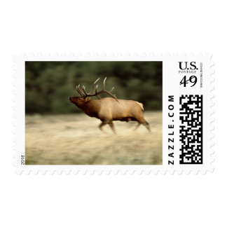 Waterton Lakes National Park, Alberta, Canada, a Stamp