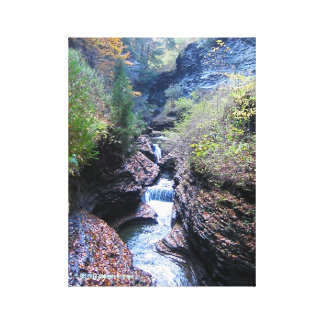 Watkins Glenn State Park Scene in Autumn Canvas Print