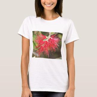 Wattle Fireworks T-Shirt