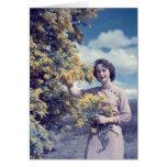 Wattle in Canberra - retro Card