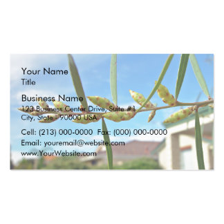 Wattle pods against blue sky Double-Sided standard business cards (Pack of 100)
