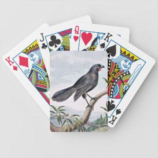 Wattlebird Vintage Bird Illustration Bicycle Playing Cards