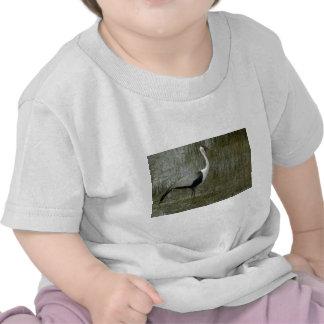 Wattled Crane T Shirt