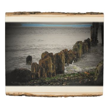 Beach Themed Wave Brakers on the Puget Sound or add your own Wood Panel
