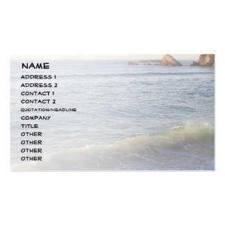 Wave, Côte des Basques Double-Sided Standard Business Cards (Pack Of 100)