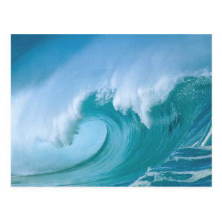 wave post cards