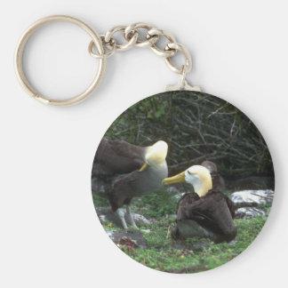 Waved Albatross In Courtship Keychain