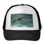 Waved Albatross In Flight Trucker Hats