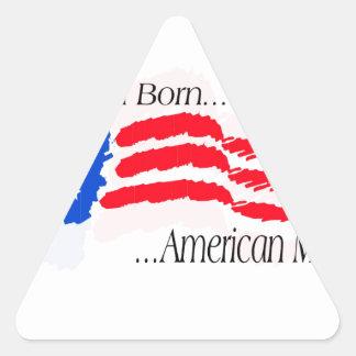 waveflagabam.PDF Triangle Sticker