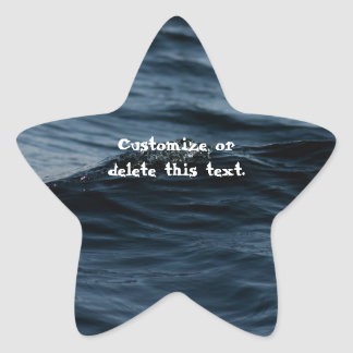 Wavelet; Customizable Star Sticker