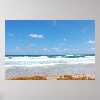 WAVES BRINGING IN THE SEAWEED POSTER