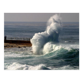 Waves Crashing Seals La Jolla Postcard