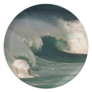 Waves Dinner Plate